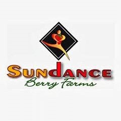 Sundance Berry Farms
